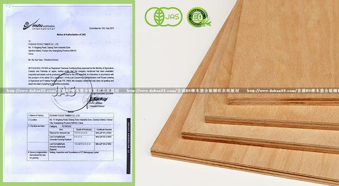 吉盛唐朝榉木胶合板有机JAS认证F4(F★★★★级)详解四星标准,家具板