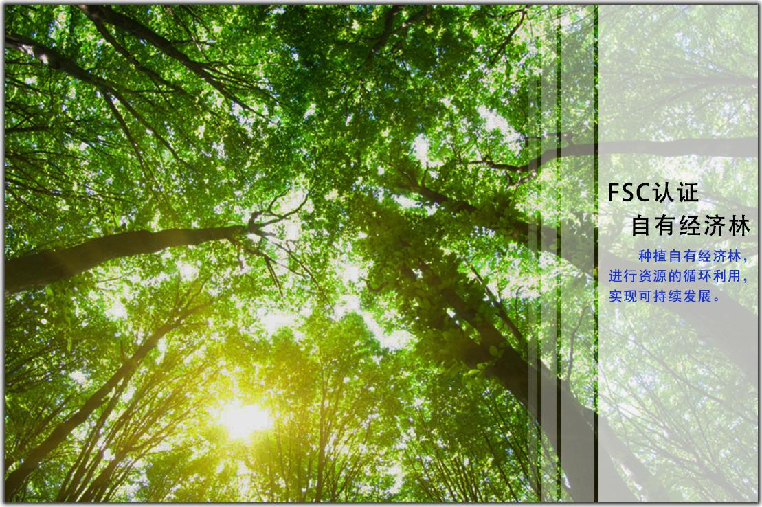 坚持原木100%产于自有生态经济林并通过FSC欧洲森林认证