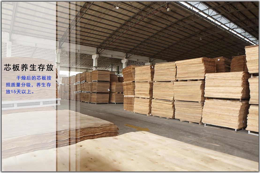 桉木芯板养生整理 榉木夹板基材