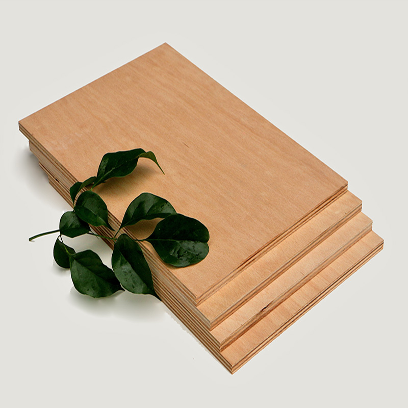 吉盛榉木胶合板,装修效果就是好