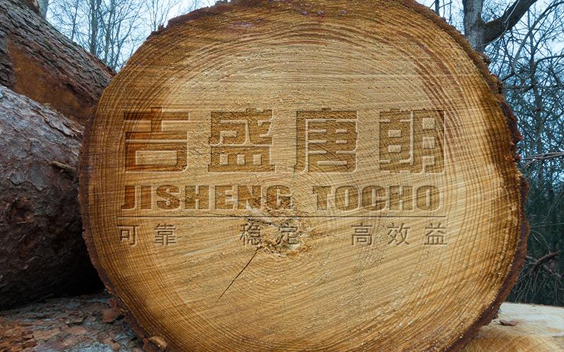 白橡拉丝木饰面板,返璞归真,尊崇自然