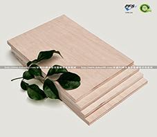 榉木胶合板的优势是什么?