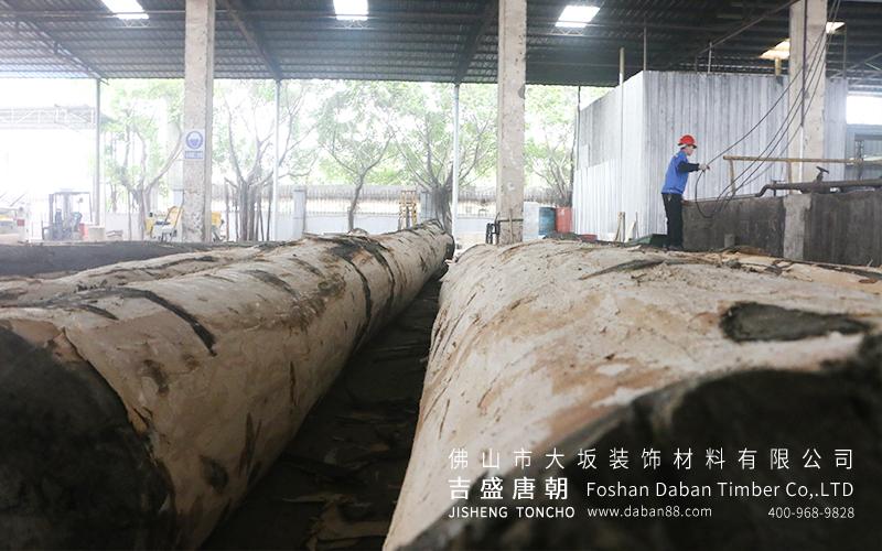 吉盛唐朝:我们不依靠榉木胶合板价格来获取客户