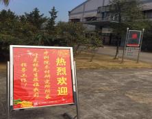 中科院木材研究所领导一行莅临吉盛唐朝木业公司视察指导胶合板厂家