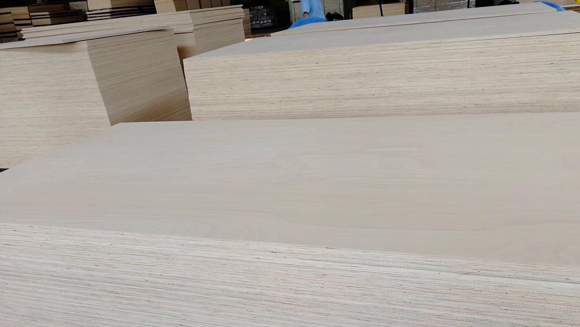 榉木家具板有哪些独特的优势?