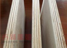CARB-P2 E0 FSC CE JAS F四星榉木家具胶合板跟市场普通板比较