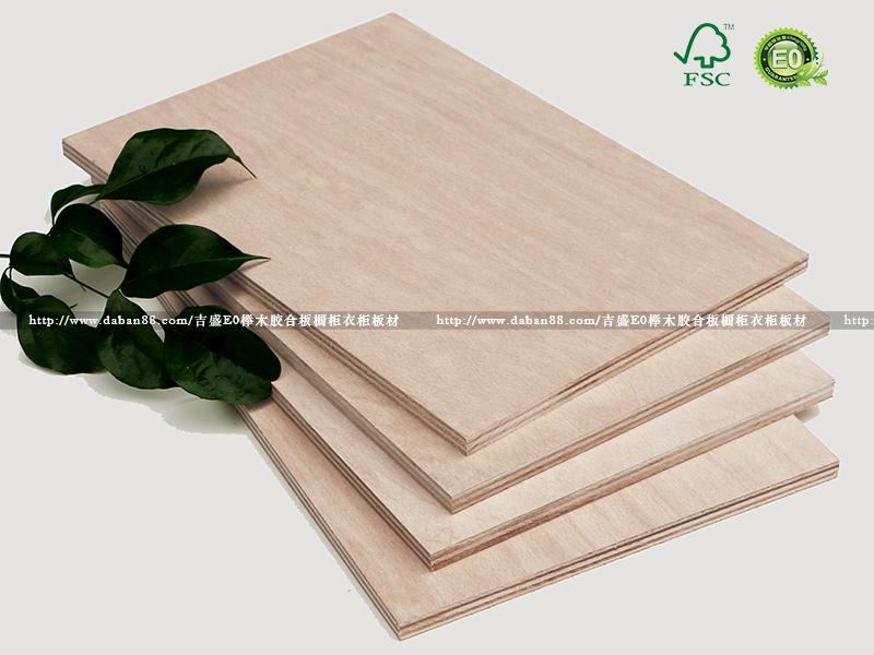 吉盛出口欧洲FSC认证榉木胶合板