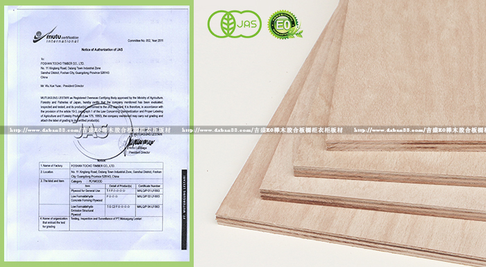 JAS认证F四星标准进口榉木胶合板