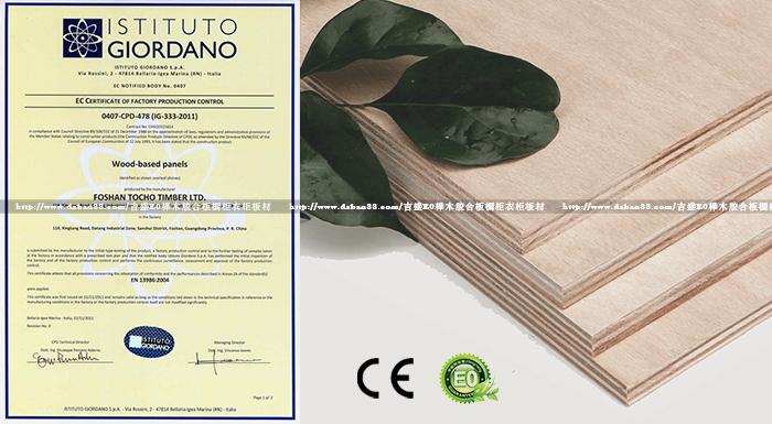 CE认证出口欧美榉木胶合板