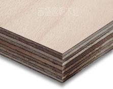 吉盛进口榉木胶合板,通过BS1088海洋胶合板船用胶合板,吉盛板唐朝木业